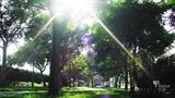Parc Jaume I