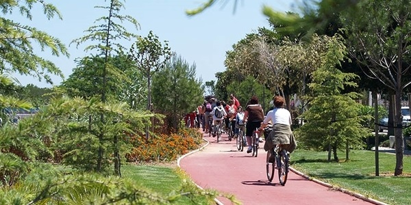 Carril bici (Av. Sanchis Guarner)
