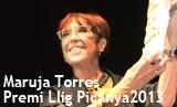 Acte de lliurament del Premi Llig Picanya 2013
