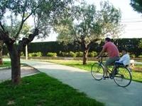 Carril bici Av. Jaume I - 001