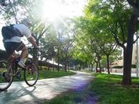 carril bici avinguda Jaume I