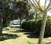 Treball intens als jardins de Picanya