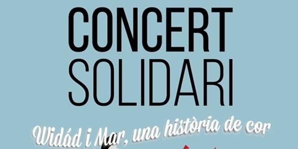 concert-solidari-18 gavina