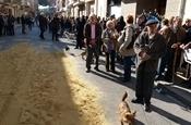 Festa Sant Antoni 2012 P1157793