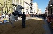 Festa Sant Antoni 2012 P1157805