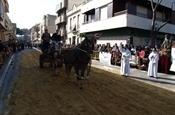 Festa Sant Antoni 2012 P1157826