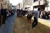 Festa Sant Antoni 2012 P1157834