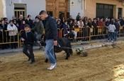 Festa Sant Antoni 2012 P1157845
