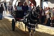 Festa Sant Antoni 2012 P1157853