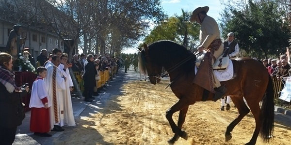 Festa de Sant Antoni este proper diumenge 13 de gener