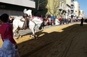 Festa Sant Antoni 2012 P1157873