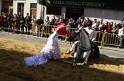 Festa Sant Antoni 2012 P1157874