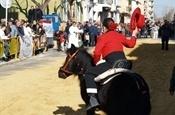 Festa Sant Antoni 2012 P1157885