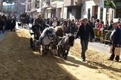 Festa Sant Antoni 2012 P1157891