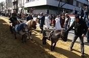 Festa Sant Antoni 2012 P1157892