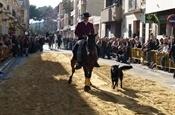 Festa Sant Antoni 2012 P1157893