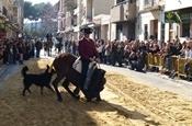 Festa Sant Antoni 2012 P1157894