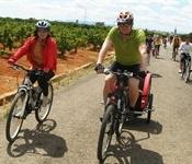 Més de 200 participants al cicle passeig per l'Horta