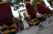 Dansetes del Corpus 2012 P6090514